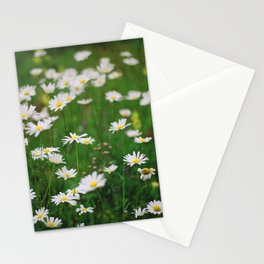 Сamomile Stationery Cards