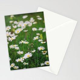 Сamomile Stationery Cards
