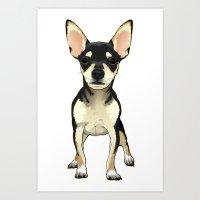 chihuahua Art Prints featuring Chihuahua by jackwatson05
