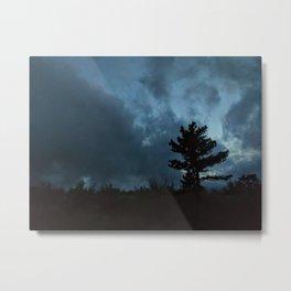 tree 01 Metal Print