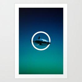 Shark. Art Print