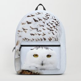 Join me on my journey Backpack