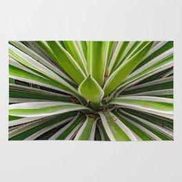 Tropical Plant Detail, Botanic Garden, Guayaquil Rug
