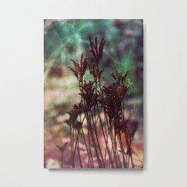 Autumn plants #artistic #photography Metal Print