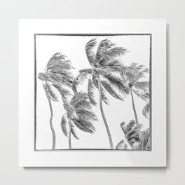 Haiti, Coconut Palms on the Caribbean Sea Metal Print