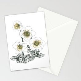 Christmas Rose Stationery Cards