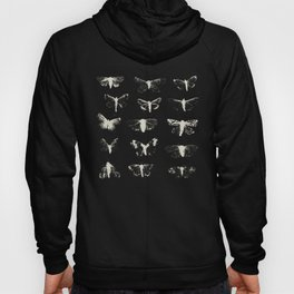 moths Hoody