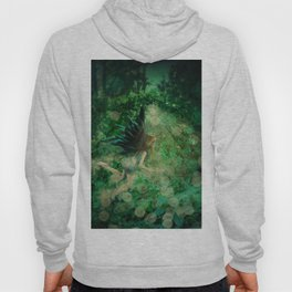 Abstract illustration of fairy fly in the forest Hoody