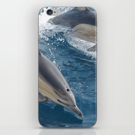 Common Dolphin iPhone Skin