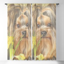 Spring Yellow Crocuses With Yorkie Puppy #decor #society6 Sheer Curtain