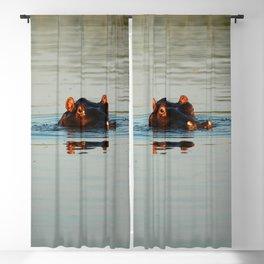 Cute Hippo Bathing Blackout Curtain