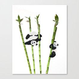 Panda Bamboo Madness Canvas Print