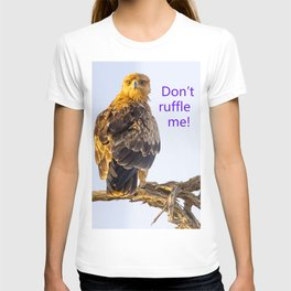 Juvenile eagle with ruffled feathers.  With text message T-shirt