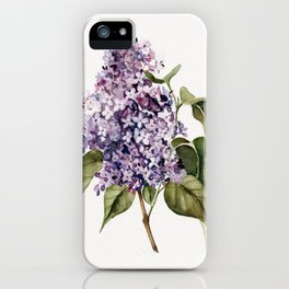Lilac Branch iPhone Case