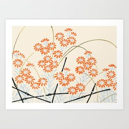 Ornamental Chrysanthemum, Daisy Flowers Art Print