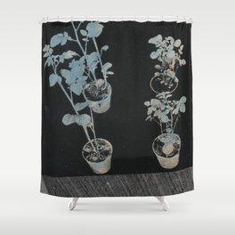 Das Hier 12 Shower Curtain