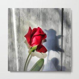 Red Rose Bud Shadow Metal Print