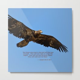 Soaring High!  -  Immature Metal Print