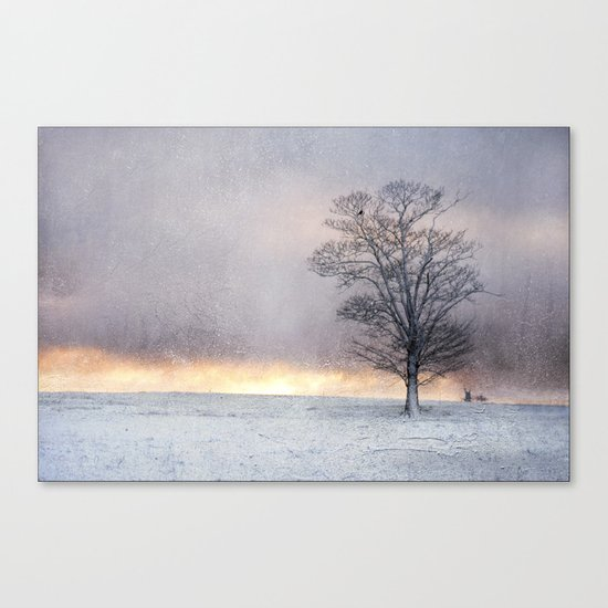 Winter Sunrise, Wramplingham, Norfolk Canvas Print