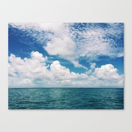 Mosquito Reef Canvas Print