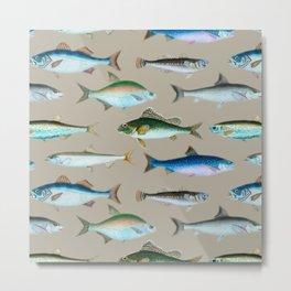 School of Fish No. 3 Metal Print