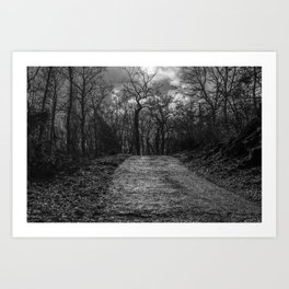 Reaching the trees, black and white Art Print