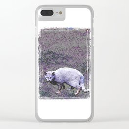 Cautious cat wary of stranger ... me! Clear iPhone Case