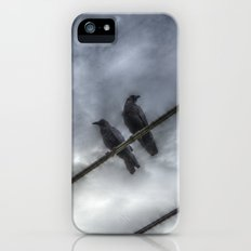 Couple of Crows iPhone (5, 5s) Slim Case