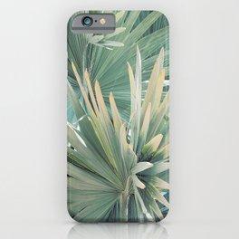Palm Foliage iPhone Case