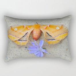 Moth and Chicory Rectangular Pillow