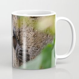 Falconers supplies hanging on the wall Coffee Mug
