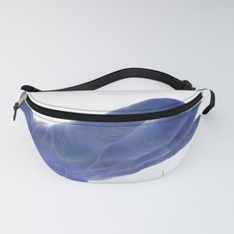 support, blue Fanny Pack