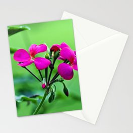 PINK Blossoms before GREEN Stationery Cards