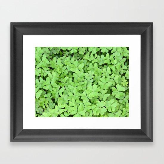 Green Clovers Framed Art Print