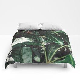 Greenery Comforters