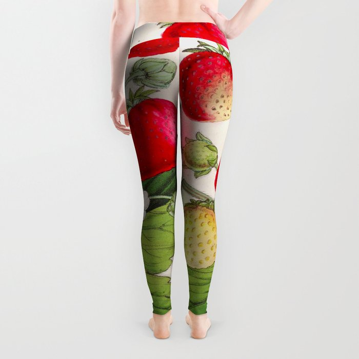 Strawberry Delights Vintage Botanical Floral Flower Plant Scientific Illustration Leggings