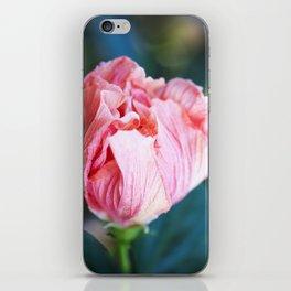 Jane Cowl Tropical Hibiscus Petals Unfurling iPhone Skin