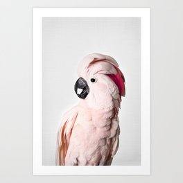Pink Cockatoo Art Print
