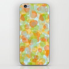 Pebbles Orange iPhone & iPod Skin