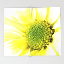 Yellow Daisy Macro Nature Photography Throw Blanket