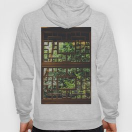 New Perspective Hoody