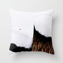 Snow on Fencepost Throw Pillow