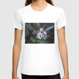 Blueberries ripening T-shirt