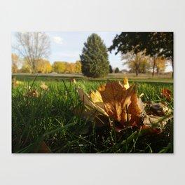 Last Vestiges of Fall Canvas Print