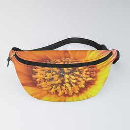 A March 1st Colorburst Fanny Pack