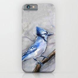 Blue Jay Watercolor Bird iPhone Case