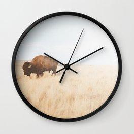 American Icon II Wall Clock
