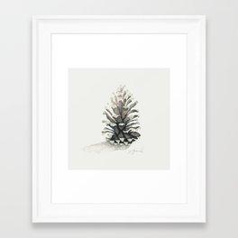 Pinecone Watercolor Framed Art Print