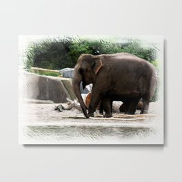 Friends at the zoo V Metal Print