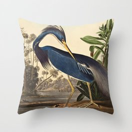 John James Audubon - Louisiana Heron Throw Pillow